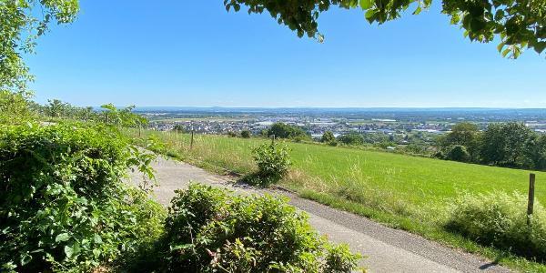 Blick ins Rheintal – in der Bildmitte: Roisdorf