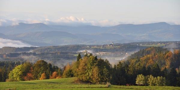 Alpenpanorama bei Wilfingen