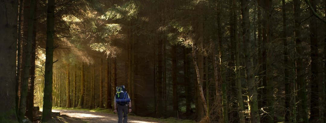 Hiking Loch Lomond