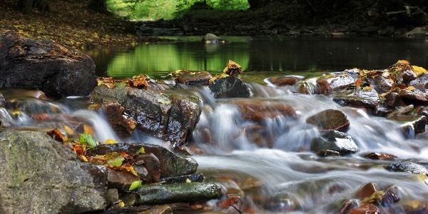 Bachlauf am Klusteich - Naturpark Münden