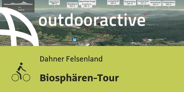 Radtour im Dahner Felsenland: Biosphären-Tour