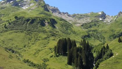 Blick von der Plättele Alp