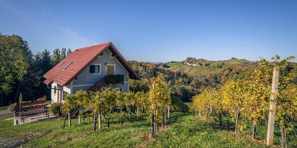 Ferienhaus Weingut Perner