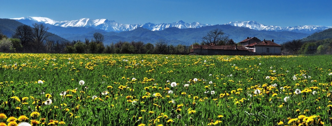 View to the Balkan Mountains