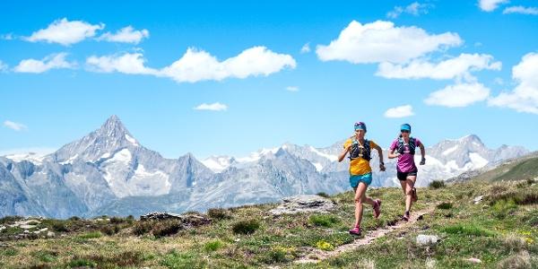Simplon Trail