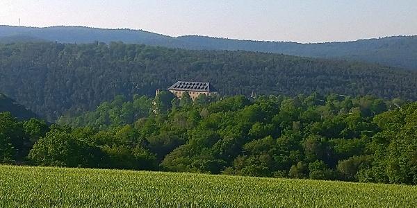 Blick auf Burg Altleiningen