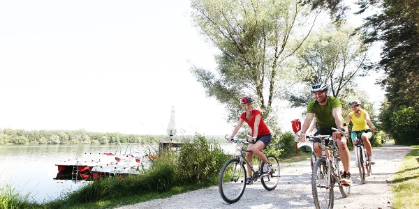 Radeln bei den Viehofner Seen in St. Pölten