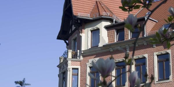 Magnolie und Balkon