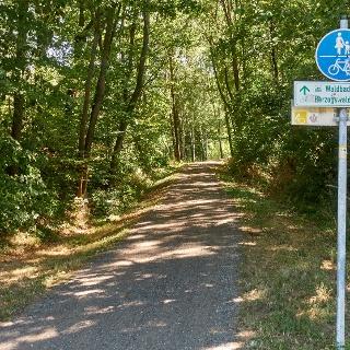 Radweg auf dem alten Bahndamm zwischen Mohorn und Helbigsdorf