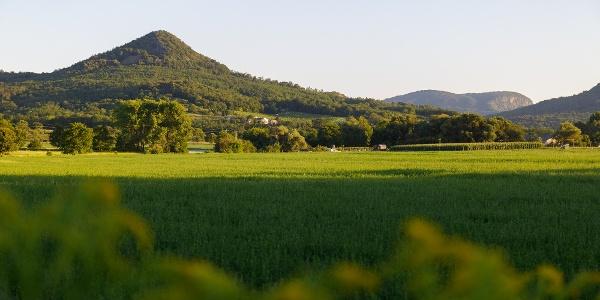 A Tóti-hegy, a háttérben a Badacsonnyal