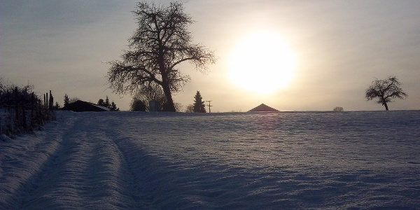 Der Kronenhof im Winter
