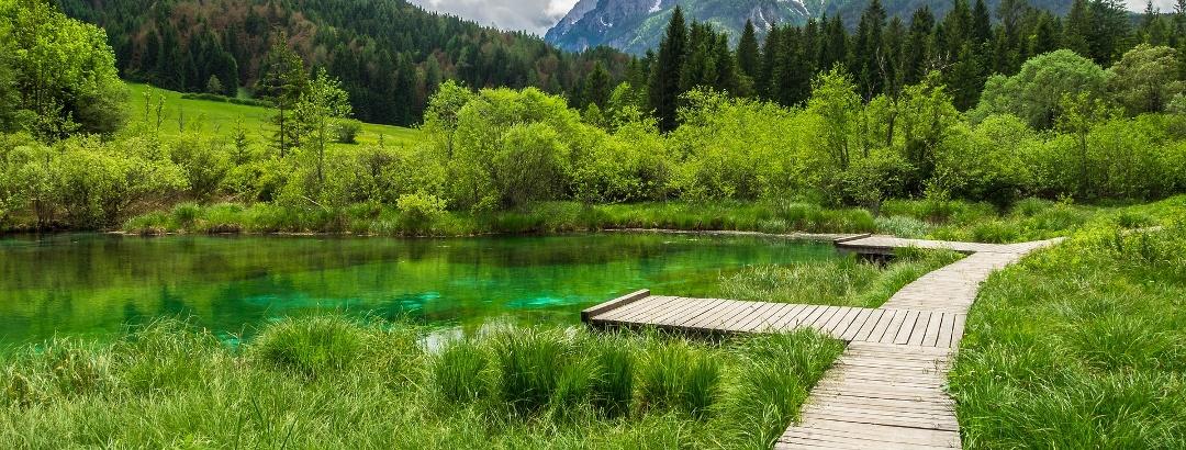 Nature Reserve Zelenci