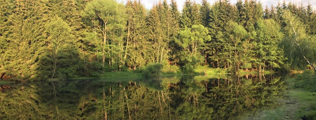 Lacul Trei Ape