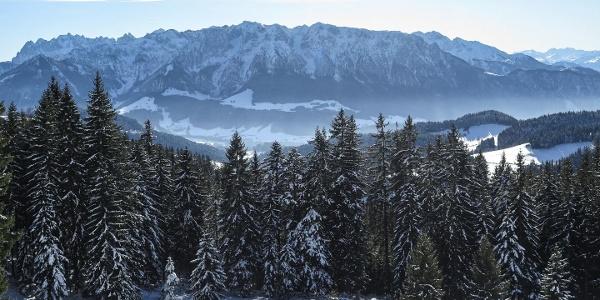 Erlerberg Winter Schnee Winterwandern