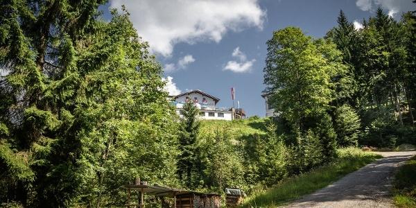 Wandern Aschenbrenner Stadtberg Naturerlebnis Kaisergebirge
