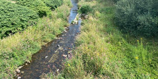 Müglitz - Fluß