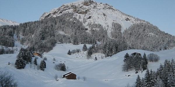 Seewaldsee Winter