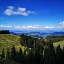 Blick Richtung Zürichsee auf der Spital Höhe