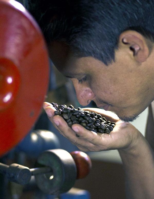 Im Zentralen Hochland wird Kaffee angebaut.