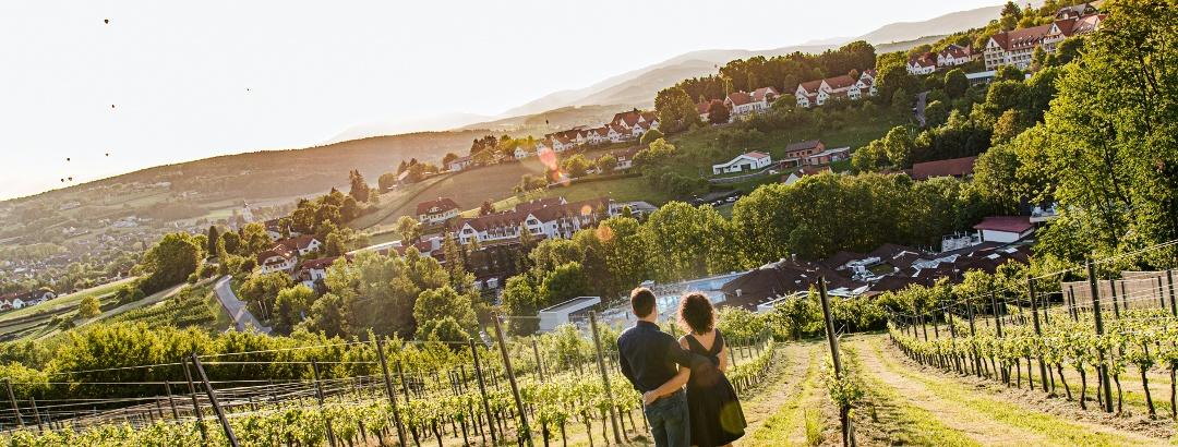 Blick auf die Heiltherme von den Weingärten