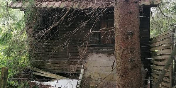 Hütte vom Holzweible?