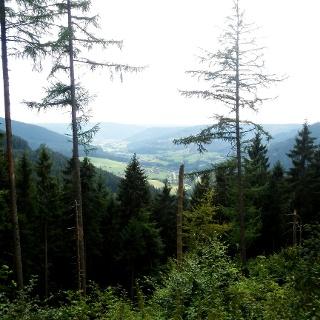 Blick nach Klosterreichenbach