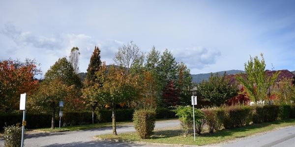Zufahrt zum Stellplatz Bad Gams