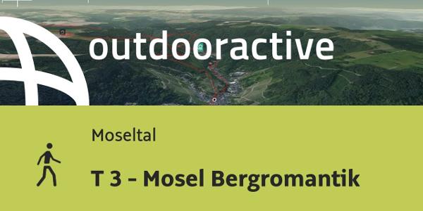Wanderung in Moseltal: T 3 - Mosel Bergromantik