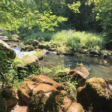 Irreler Wasserfall