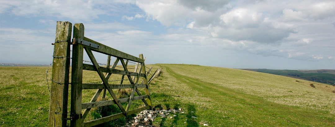 Walk through peaceful fields on the SDW