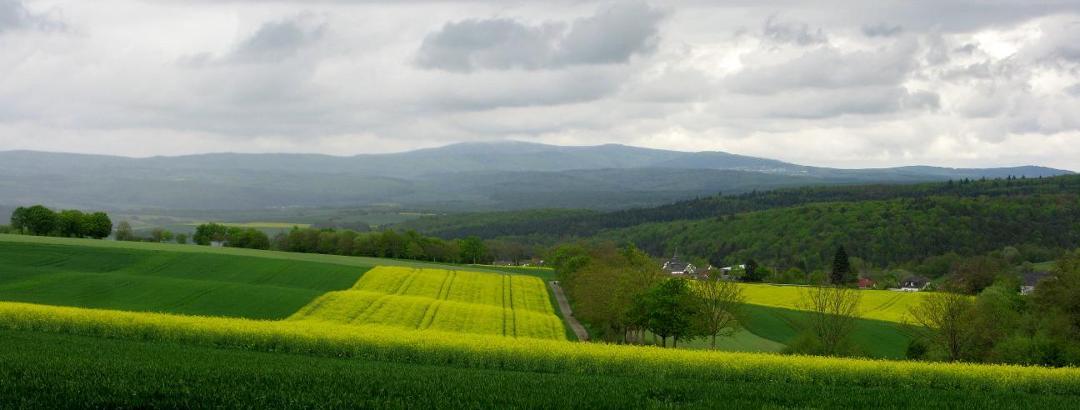 Blick vom westlichen Punkt der Wanderung im Frühjahr