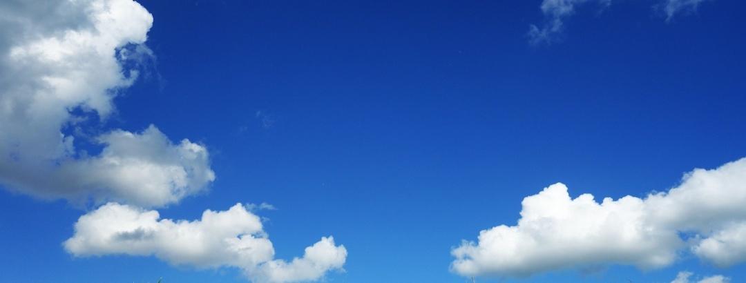 Himmel und Wiese