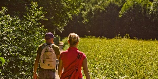 Wandern in Baden