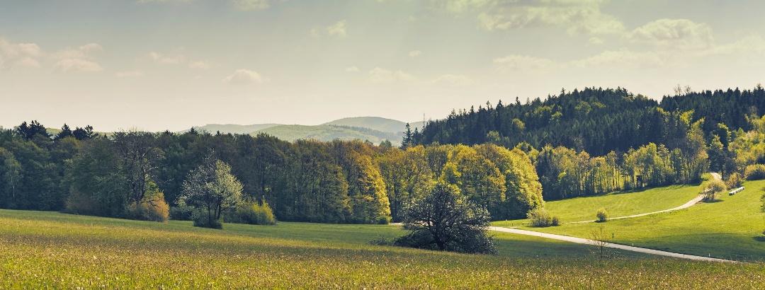 Panoramaweg Troppberg