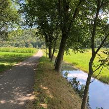 Wässerwiesen bei Mühlhausen und Rosswag