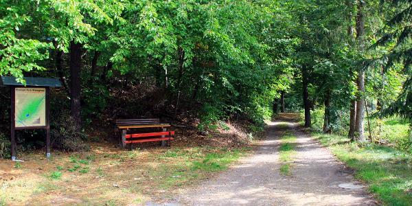 Munziger Park/ Diebsgrund
