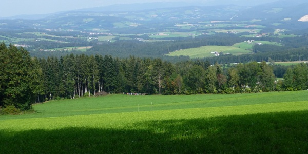Wenigzell, St. Jakob im Walde