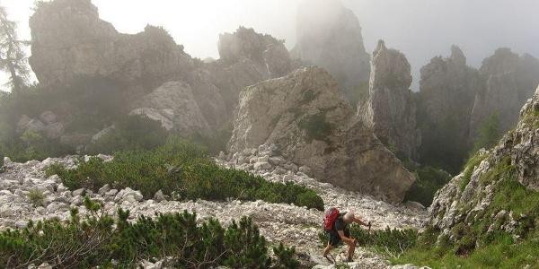 Ferrata dino buzzati cimerlo - sentiero dei cacciatori