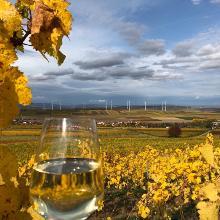 Goldener Oktober... nicht nur im Glas 😍