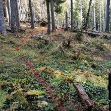 Bei der Wegtafel bei den Lackerboden-Hütten; Beginn vom Steig ist mit Steinmännern markiert