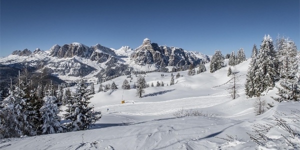 Winterpanorama