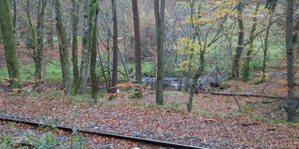 Weg vom Forsthaus Breitenstein an der Bahn entlang