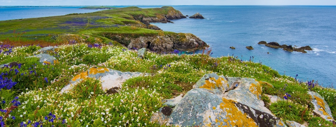 ltee Island Great, Ireland