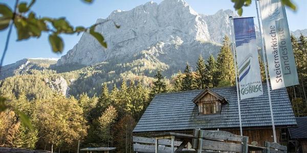 Willkommen_am_Campingplatz_Forstgarten