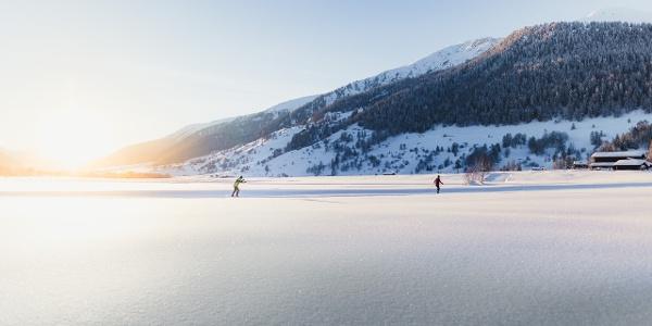 Ski de fond dans la chaleureuse lumière du soir