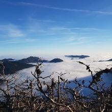 Blick Richtung Puchberg