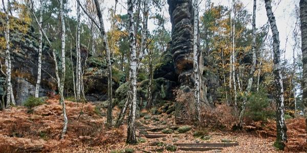 Der Aufstieg zum Kohlbornstein