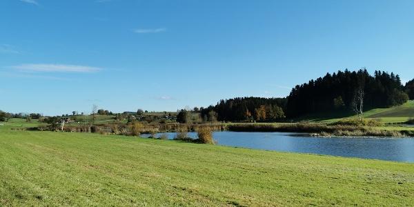 Weiherlandschaft Ostergau
