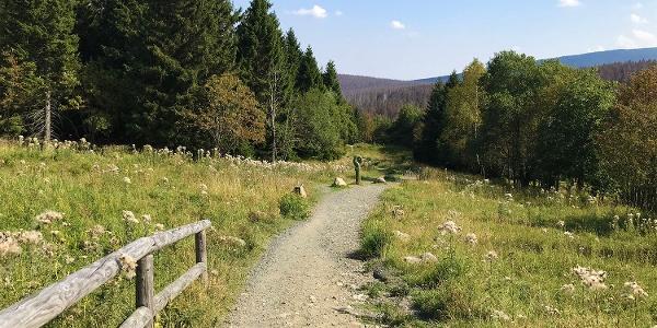 Path to Brocken