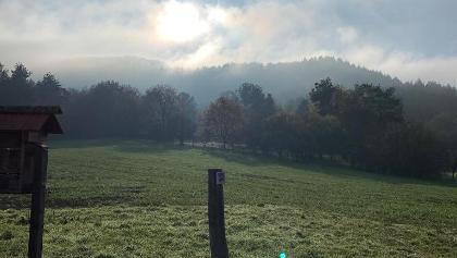 Sonne/Nebel